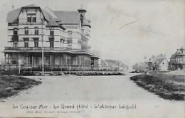 DE HAAN.  LE GRAND HOTEL.  L'AVENUE LEOPOLD. - De Haan