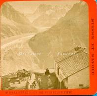 Chamonix 1870 * Mulets à La Flégère (voyage De Noce, Voir Descriptif) * Photo Stéréoscopique Charnaux - Stereoscopic