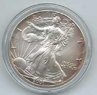 STATI UNITI 1 DOLLARO AQUILA (oncia) 2001 - Federal Issues