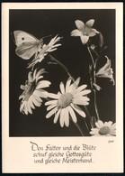 C4597 - Groh Foto Spruchkarte - Blumen Schmetterling - München - Blumen