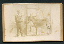 Fotografia Antiga (Montemor O Novo?) Jovem Com Cavalo Ou Burro Bebé. Old Sepia Photo PORTUGAL - Photos