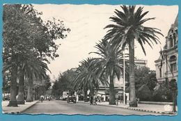 SIDI-BEL-ABBES Le Boulevard De La République Jeep Hotchkiss Photo Véritable Circulé 1960 - Sidi-bel-Abbès