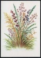 C4606 - Stöckel Verlag Ansichtskarte - Blumen - Stöckelbildkarte Hannover - Blumen