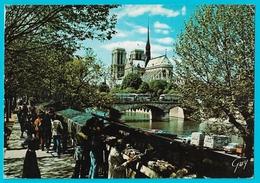 Paris Et Ses Merveilles -  Notre Dame De Paris Quai De La Tournelle Bouquinistes - Notre Dame De Paris