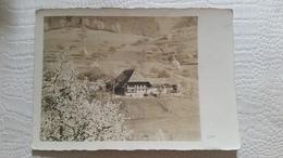 B6/carte Photo-chalet Dans Alpage - Cartes Postales