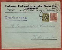 Drucksache, Wolter & Co Seefisch-Grosshandlung Cuxhaven, Ziffer + Germania, Nach Huefingen 1921 (72458) - Briefe U. Dokumente