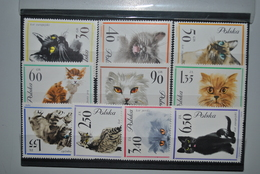 Pologne 1964 Chats MNH Complet - Neufs