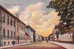 "0390 ""SISAK - GAJEVA ULICA""  ANIMATA, CART. ORIG. SPED. 1917 - Croazia"