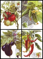UKRAINE 2016. VEGETABLES. Set Of MAXICARDS - CARTES MAXIMUM  Mi-Nr. 1572-75 - Vegetazione
