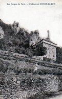 3899 - 48 Gorge Du Tarn - Vigne Château De Roche Blaye  ( Carte Pliée ) - Other Municipalities