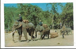 Tailandia - Piccolo Formato - Non Viaggiata - Tailandia