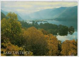 LAKE  DISTRICT     BORROWDALE  FROM   BELOW  FALCON  CRAG            (VIAGGIATA) - Cumberland/ Westmorland