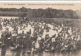 SENEGAL  Les Femmes, Armées De Nasses, Font La Pêche Dans Les Marigots - Senegal