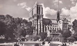 PARIS -  Cathédrale Notre-Dame Vue Du Square Viviani - Notre Dame De Paris