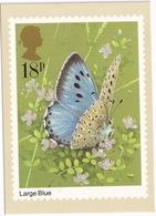 Butterflies: LARGE BLUE  - Vlinder / Butterfly / Schmetterling / Papillon - (United Kingdom)  - 18P - Vlinders