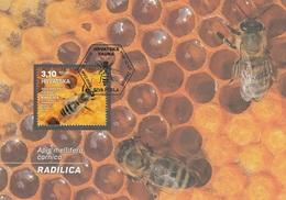 MAXIMUM CARD CROATIA 1187,bees - Croatie