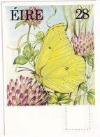 Fauna And Flora Series: BRIMSTONE  - Vlinder / Butterfly / Schmetterling / Papillon - (Eire - Ireland)  - 28P - Vlinders
