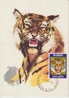 Bangladesh Carte Maximum 1974 Tigre 56 - Bangladesh