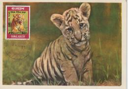 Bangladesh Carte Maximum 1974 Tigre 57 - Bangladesh