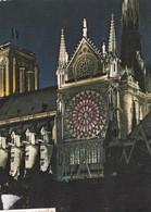 PARIS -  La Cathédrale Notre-Dame - Notre Dame De Paris