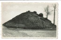 CPA - Carte Postale Belgique - Tongeren- Romeinsche Tumulus VM2347 - Tongeren