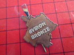 216B Pin's Pins / Beau Et Rare / THEME : SPORTS / AVIRON : BRONZE CARTE DE FRANCE HEXAGONE - Roeisport