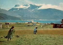 CPM - Scène Paysanne - Femmes Aux Travaux Des Champs - Greenland
