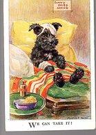 Wounded Dog 1930 > Belfast (52) - 1922-37 Irischer Freistaat