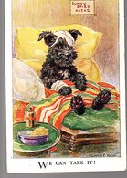 Wounded Dog 1930 > Belfast (52) - 1922-37 Stato Libero D'Irlanda