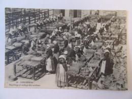 Concarneau N°39 - Engrillage Et Séchage Des Sardines - Carte Très Animée, Circulée En 1912 - Concarneau