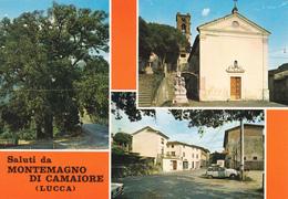 LUCCA - Saluti Da Montemagno Di Camaiore - 3 Vedute - Chiesa I S.Michele - Panorama - Leccio Secolare - Lucca