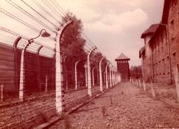 CPSM - OSWIECIM - Vue Camp De Concentration Auschwitz - Pologne