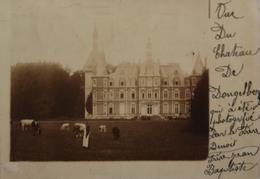 Dongelberg // FOTOKAART - Carte Photo // Chateau De Dongelberg (animee) 1912 - Geldenaken