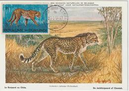 Burundi Carte Maximum Animaux 1964 Guépard 92 - Autres