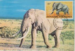 Burundi Carte Maximum Animaux 1964 Eléphant 93 - Autres