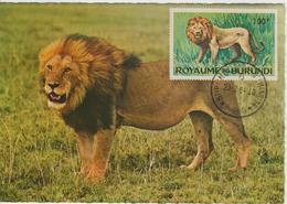 Burundi Carte Maximum Animaux 1964 Lion 94 - Burundi
