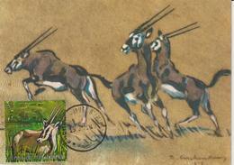 Burundi Carte Maximum Animaux 1971 Oryx 449 - Autres