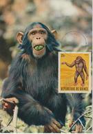 Guinée Carte Maximum Animaux 1969 Singe 382 - Guinée (1958-...)