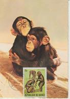 Guinée Carte Maximum Animaux 1969 Singe 384 - Guinée (1958-...)
