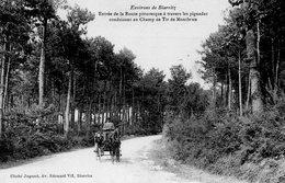 ANGLET - Entrée De La Route Pittoresque à Travers Les Pignadas - Jugand Edit - Vierge - Tbe - Anglet