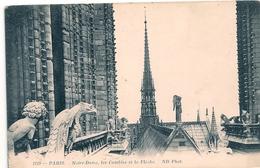 Cpa 75 Paris 1 Notre Dame Les Combles La Flèche. - Notre Dame De Paris