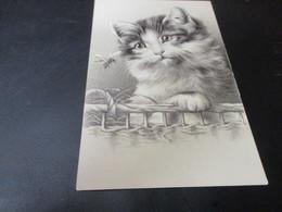 Fantasiekaart Katten - Chats