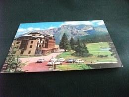 GOLF HOTEL CAMPI GOLF PASSO DI CAMPO CARLO MAGNO BRENTA MADONNA DI CAMPIGLIO  TRENTO AUTO CAR - Alberghi & Ristoranti