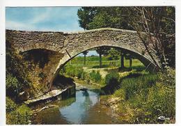 CÉRESTE (Alpes De Hte. Prov.).- Le Pont Romain - Autres Communes