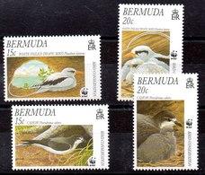 Serie De Bemudas N ºYvert 735/38 ** - Bermudas