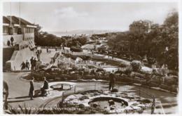 DORSET - BOURNEMOUTH - NEW ROCK GARDENS  RP  Do321 - Bournemouth (until 1972)