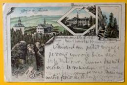 8486 - Gruss Vom Stern Litho - Austria