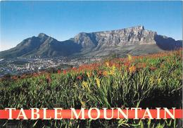 TABLE MOUNTAIN - The Berg And The Devil'sPeak - Signal Hill - Afrique Du Sud