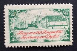 BERGENSULSTILLINGEN  1910   ETICHETTA  PUBBLICITARIA  ERINNOFILO - Erinnofilia