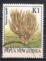 Papua New Guinea 1995 - Fung - Papúa Nueva Guinea